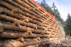 arce-muri-in-legno-11