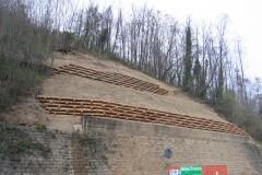 Arce e muri in legno