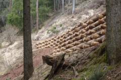 arce-muri-in-legno-7