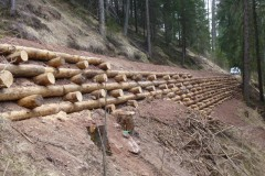 arce-muri-in-legno-8