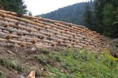 arce-muri-in-legno-9