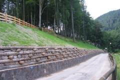 Muri in legno